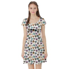 Colorful Pattern With Colored Cats Short Sleeve Skater Dress by CoolDesigns