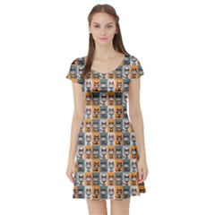 Colorful Pattern With Kittens In Fashionable Clothes Short Sleeve Skater Dress