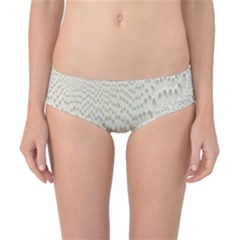 Coral X Ray Rendering Hinges Structure Kinematics Classic Bikini Bottoms