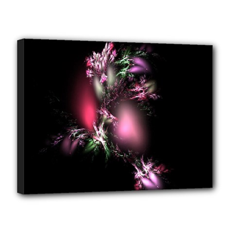 Colour Of Nature Fractal A Nice Fractal Coloured Garden Canvas 16  X 12  by Simbadda