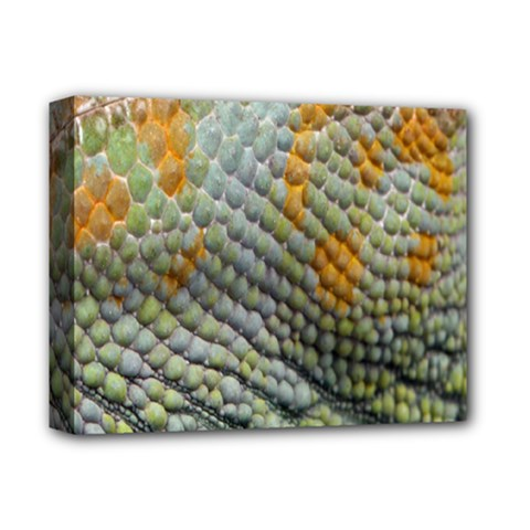 Macro Of Chameleon Skin Texture Background Deluxe Canvas 14  X 11
