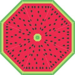 Watermelon Fan Red Green Fruit Straight Umbrellas