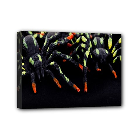 Colorful Spiders For Your Dark Halloween Projects Mini Canvas 7  X 5  by Simbadda