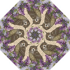 Vintage Owl And Lilac Folding Umbrellas by Valentinaart