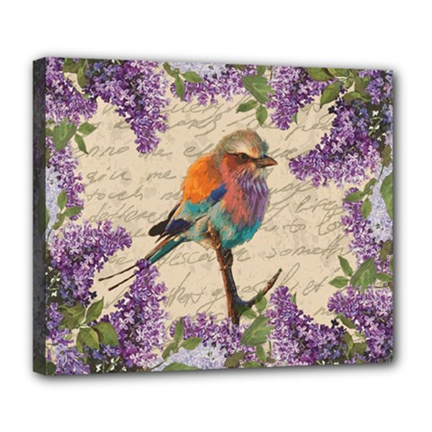 Vintage Bird And Lilac Deluxe Canvas 24  X 20   by Valentinaart