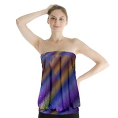 Fractal Color Stripes Strapless Top