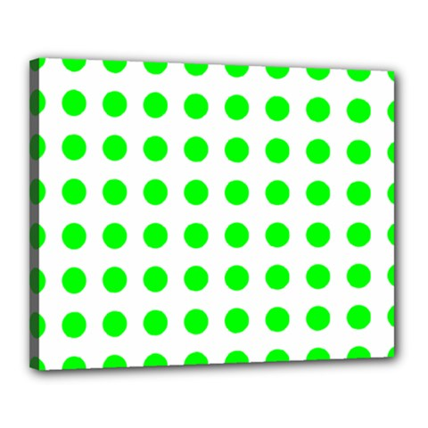 Polka Dot Green Canvas 20  X 16  by Mariart