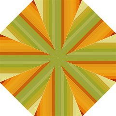 Colorful Citrus Colors Striped Background Wallpaper Folding Umbrellas by Simbadda