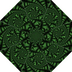 Fractal Drawing Green Spirals Folding Umbrellas by Simbadda