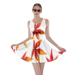 Colorful Autumn Leaves On White Background Skater Dress by Simbadda