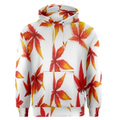 Colorful Autumn Leaves On White Background Men s Pullover Hoodie