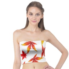 Colorful Autumn Leaves On White Background Tube Top by Simbadda