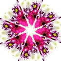 Pink Purple And White Flower Bouquet Hook Handle Umbrellas (Large) View1