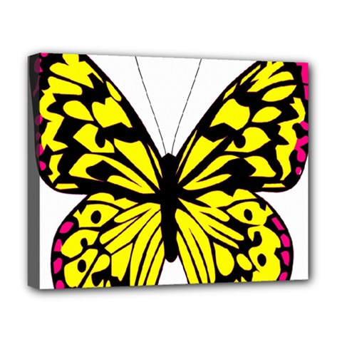 Yellow A Colorful Butterfly Image Deluxe Canvas 20  X 16   by Simbadda