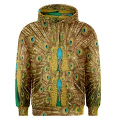 Peacock Bird Feathers Men s Pullover Hoodie