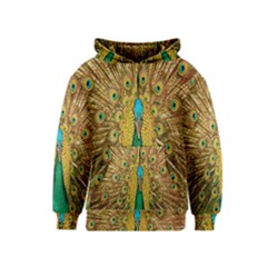 Peacock Bird Feathers Kids  Pullover Hoodie by Simbadda