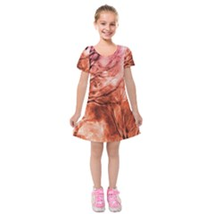 Fire In The Forest Artistic Reproduction Of A Forest Photo Kids  Short Sleeve Velvet Dress by Simbadda