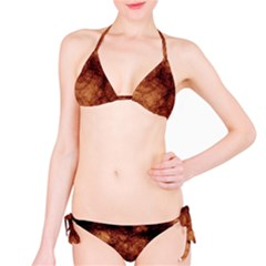 Abstract Brown Smoke Bikini Set by Simbadda