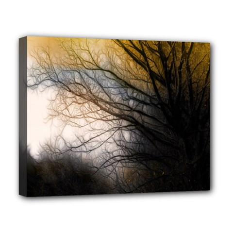 Tree Art Artistic Abstract Background Deluxe Canvas 20  X 16   by Nexatart