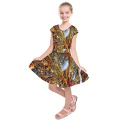 Abstract In Orange Sealife Background Abstract Of Ocean Beach Seaweed And Sand With A White Feather Kids  Short Sleeve Dress