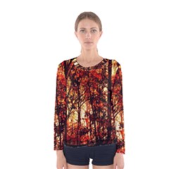 Forest Trees Abstract Women s Long Sleeve Tee by Nexatart