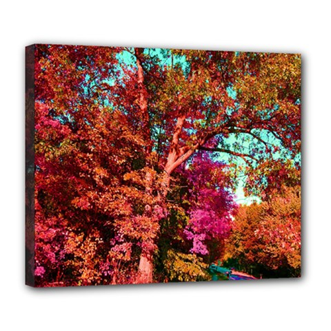 Abstract Fall Trees Saturated With Orange Pink And Turquoise Deluxe Canvas 24  X 20   by Nexatart