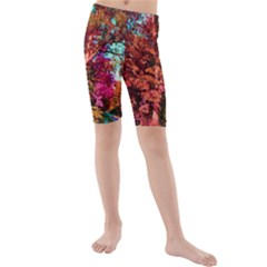 Abstract Fall Trees Saturated With Orange Pink And Turquoise Kids  Mid Length Swim Shorts by Nexatart