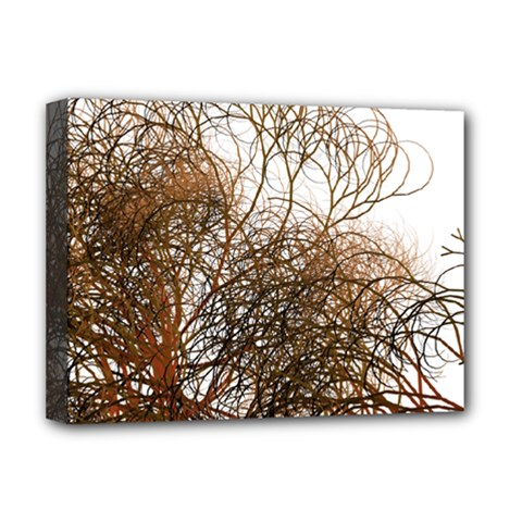 Digitally Painted Colourful Winter Branches Illustration Deluxe Canvas 16  X 12   by Nexatart