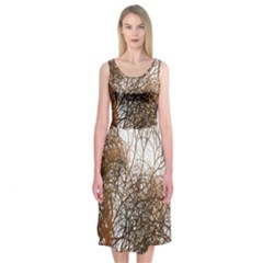 Digitally Painted Colourful Winter Branches Illustration Midi Sleeveless Dress by Nexatart