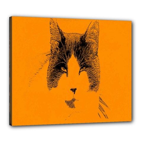 Cat Graphic Art Canvas 24  X 20  by Nexatart