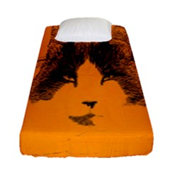 Cat Graphic Art Fitted Sheet (single Size)
