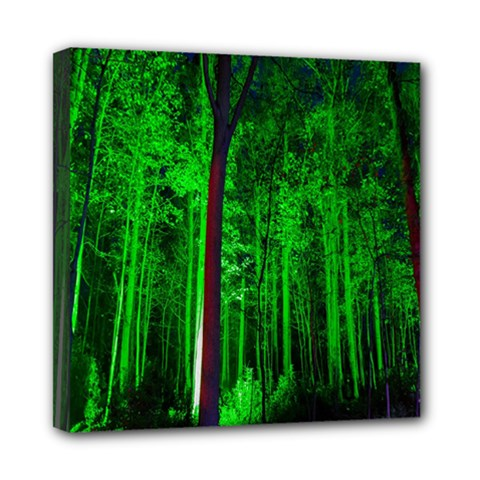 Spooky Forest With Illuminated Trees Mini Canvas 8  X 8  by Nexatart