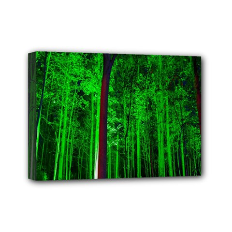 Spooky Forest With Illuminated Trees Mini Canvas 7  X 5