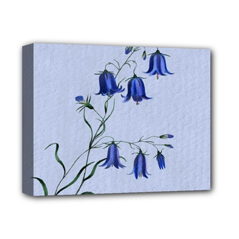 Floral Blue Bluebell Flowers Watercolor Painting Deluxe Canvas 14  X 11  by Nexatart
