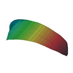 Spectrum Colours Colors Rainbow Stretchable Headband by Nexatart