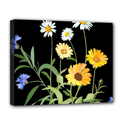 Flowers Of The Field Deluxe Canvas 20  X 16   by Nexatart
