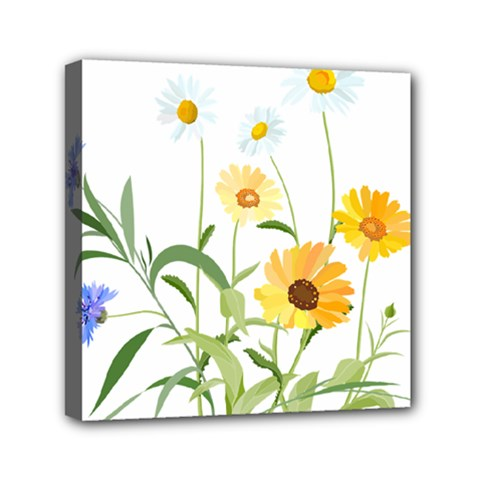 Flowers Flower Of The Field Mini Canvas 6  X 6