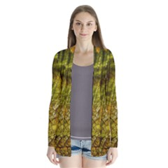 Dragonfly Dragonfly Wing Insect Cardigans