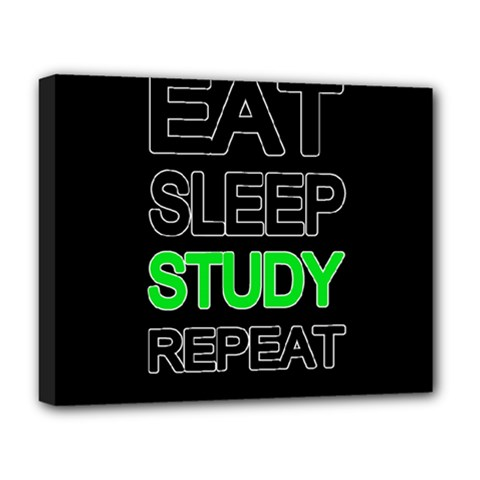 Eat Sleep Study Repeat Deluxe Canvas 20  X 16