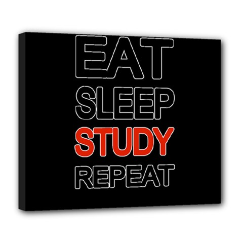 Eat Sleep Study Repeat Deluxe Canvas 24  X 20