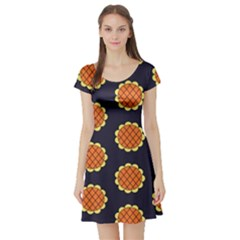 Sunshine Island Short Sleeve Skater Dress