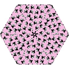 Cat Pattern Mini Folding Umbrellas by Valentinaart