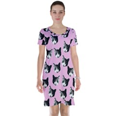 Cat Pattern Short Sleeve Nightdress