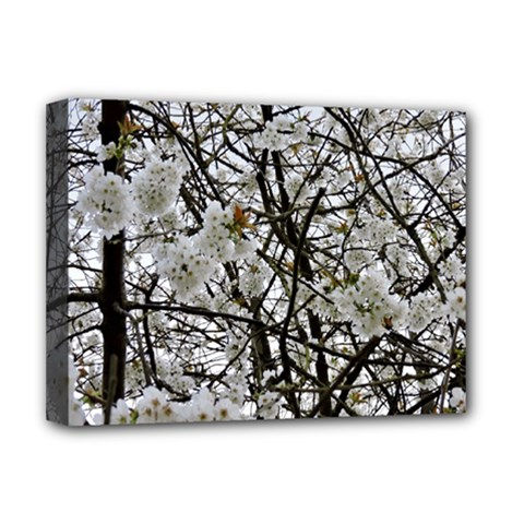 Blossom Deluxe Canvas 16  X 12   by DeneWestUK