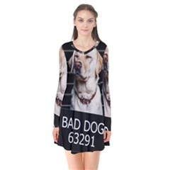 Bad Dog Flare Dress