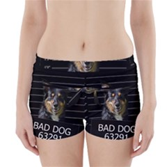 Bad Dog Boyleg Bikini Wrap Bottoms