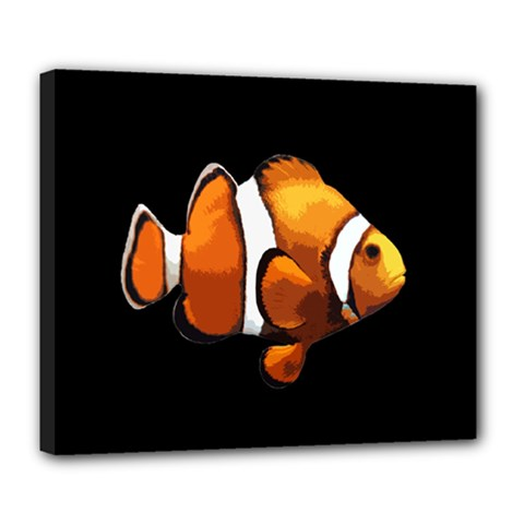 Clown Fish Deluxe Canvas 24  X 20   by Valentinaart
