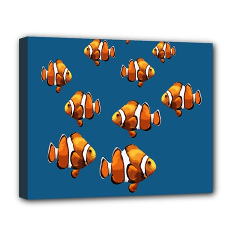 Clown Fish Deluxe Canvas 20  X 16