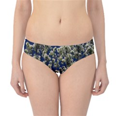 Floral Skies Hipster Bikini Bottoms by dawnsiegler