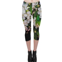 Tree Blossoms Capri Leggings  by dawnsiegler